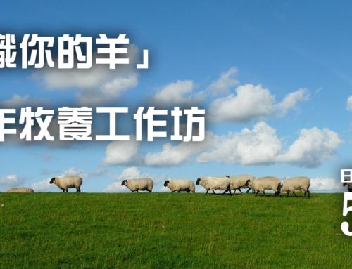 211S04 「認識你的羊」青少年牧養工作坊